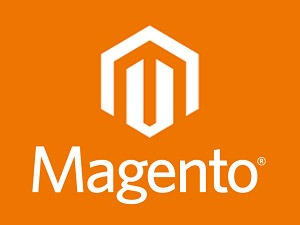 ustanovka-magento-i-znakomstvo-s-dvizhkom