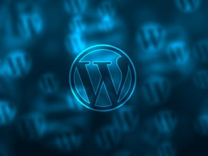 wordpress-kapcha